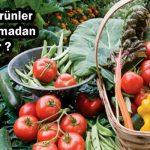 Organik Ürünler Hangi Aşamadan Geçer ?